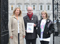 Asset: NO FEE 367 Focus Youth homeless petition at Dail.JPG
